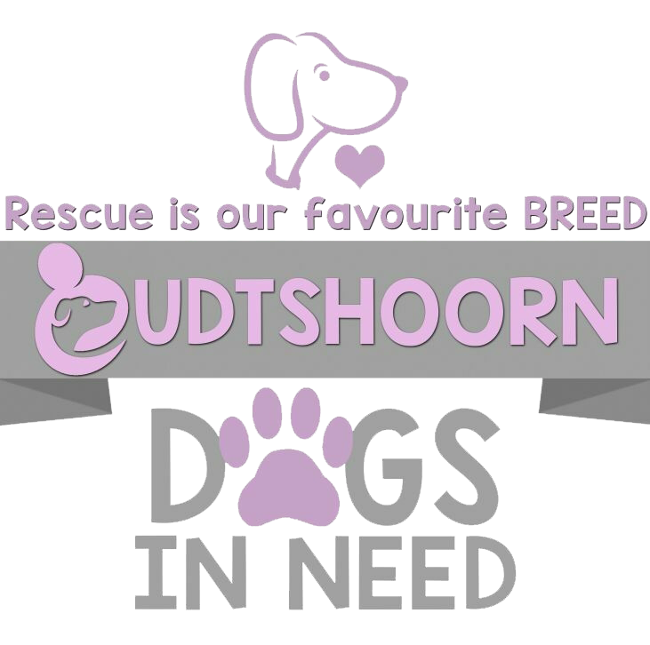 Oudtshoorn Dogs in Need - Cyber Geek SA - Donation Form